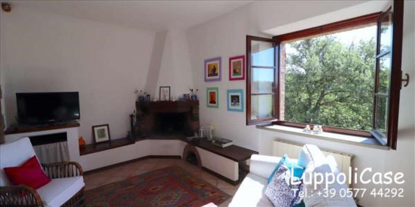 Villa in vendita a Castelnuovo Berardenga, Arredato, con giardino, 318 mq - Foto 39