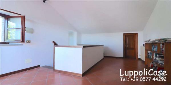 Villa in vendita a Castelnuovo Berardenga, Arredato, con giardino, 318 mq - Foto 47