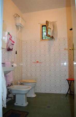 Appartamento in vendita a Predappio, Trivella, Arredato, 40 mq - Foto 20
