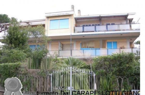 Appartamento in vendita a Anzio, Con giardino, 179 mq - Foto 12