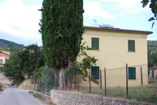 Casa indipendente in vendita a Trevi, Santa Maria In Valle, Con giardino, 200 mq - Foto 3