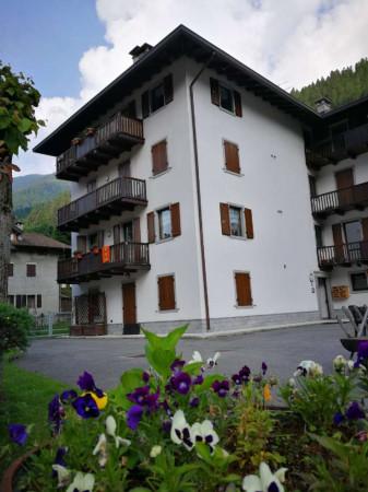 Appartamento in vendita a Strembo, Val Rendena, Arredato, con giardino, 65 mq - Foto 28