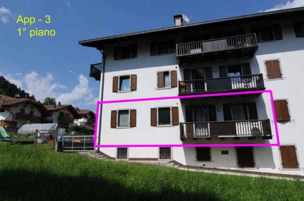 Appartamento in vendita a Strembo, Val Rendena, Arredato, con giardino, 65 mq - Foto 10