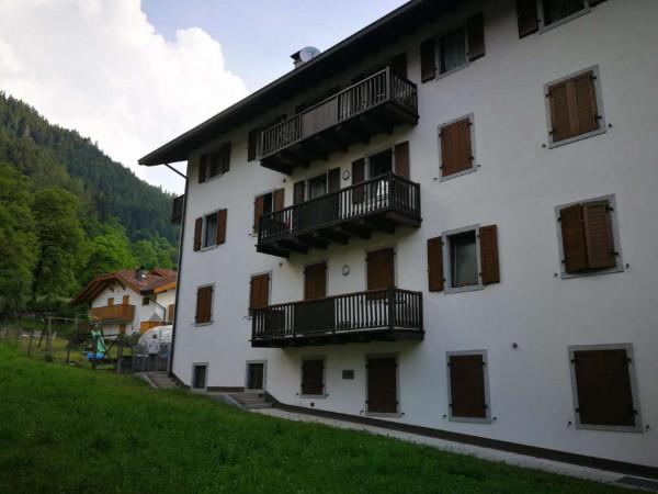 Appartamento in vendita a Strembo, Val Rendena, Arredato, con giardino, 65 mq - Foto 23