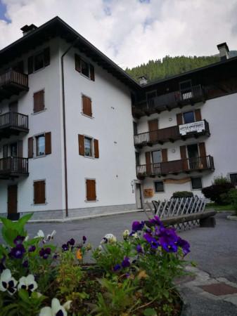 Appartamento in vendita a Strembo, Val Rendena, Arredato, con giardino, 65 mq - Foto 25