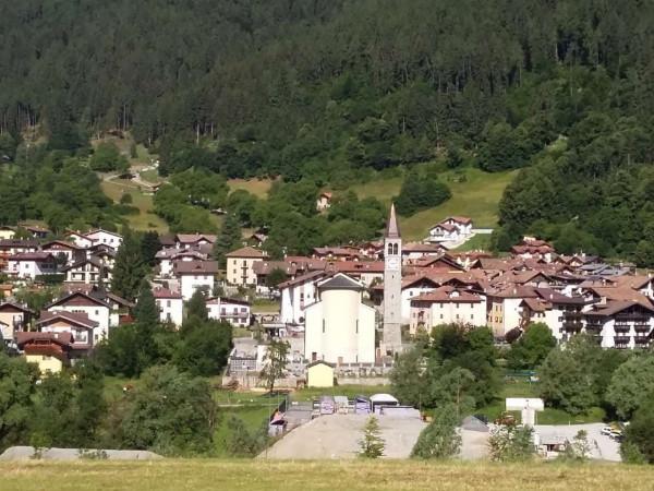 Appartamento in vendita a Strembo, Val Rendena, Arredato, con giardino, 65 mq - Foto 5