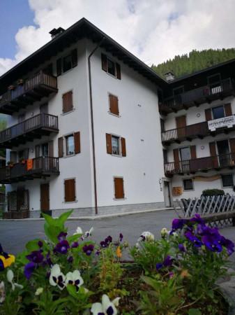 Appartamento in vendita a Strembo, Val Rendena, Arredato, con giardino, 65 mq - Foto 29