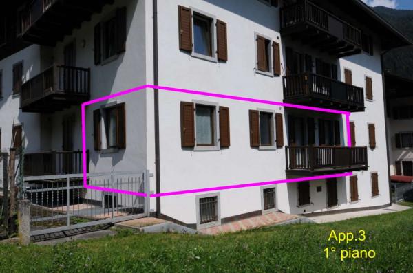 Appartamento in vendita a Strembo, Val Rendena, Arredato, con giardino, 65 mq - Foto 9