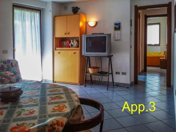 Appartamento in vendita a Strembo, Val Rendena, Arredato, con giardino, 65 mq - Foto 38