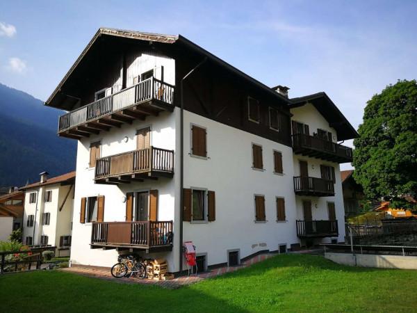 Appartamento in vendita a Strembo, Val Rendena, Arredato, con giardino, 65 mq - Foto 13