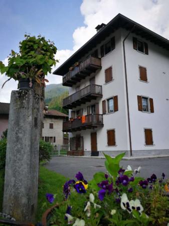 Appartamento in vendita a Strembo, Val Rendena, Arredato, con giardino, 65 mq - Foto 31