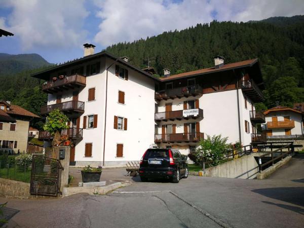 Appartamento in vendita a Strembo, Val Rendena, Arredato, con giardino, 65 mq - Foto 30
