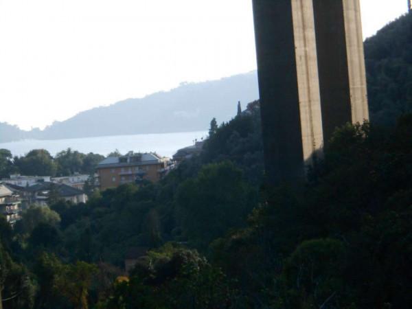 Casa indipendente in vendita a Rapallo, Adiacenze Via Comega, Con giardino, 70 mq - Foto 4
