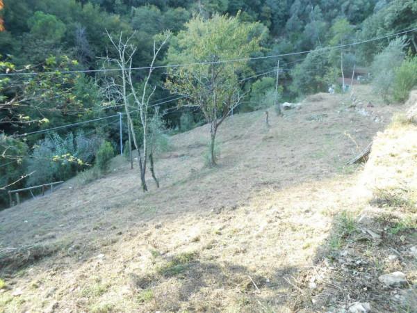 Casa indipendente in vendita a Rapallo, Adiacenze Via Comega, Con giardino, 70 mq - Foto 17