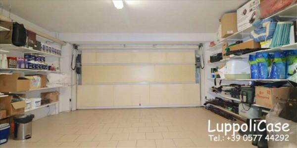 Appartamento in vendita a Monteriggioni, Arredato, con giardino, 120 mq - Foto 13