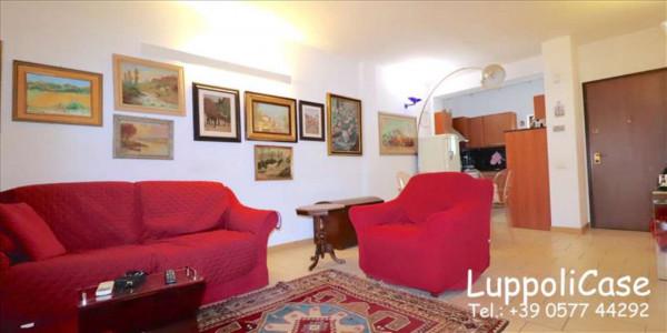 Appartamento in vendita a Monteriggioni, Arredato, con giardino, 120 mq - Foto 24