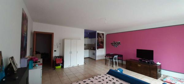 Appartamento in affitto a Grugliasco, Borgata Quaglia, Con giardino, 50 mq