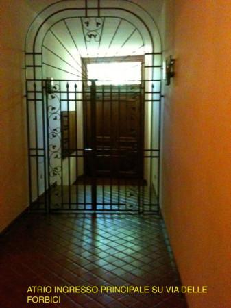 Appartamento in affitto a Firenze, Con giardino, 105 mq - Foto 14