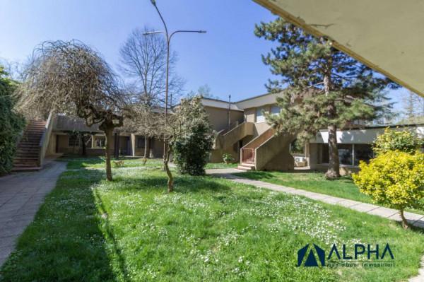 Appartamento in vendita a Castrocaro Terme e Terra del Sole, Con giardino, 35 mq - Foto 7