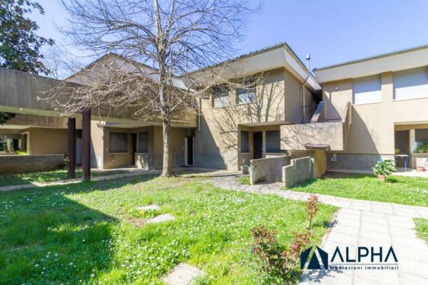 Appartamento in vendita a Castrocaro Terme e Terra del Sole, Con giardino, 35 mq