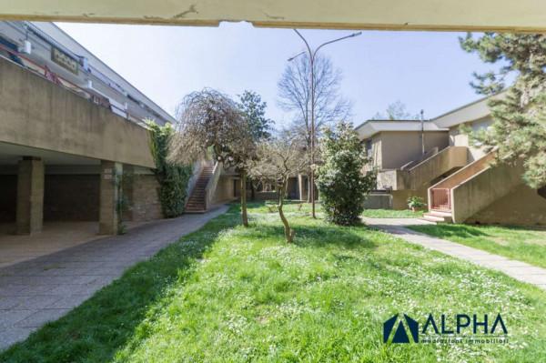 Appartamento in vendita a Castrocaro Terme e Terra del Sole, Con giardino, 35 mq - Foto 6