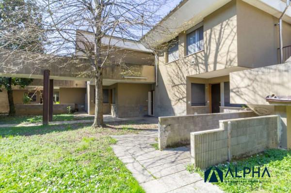 Appartamento in vendita a Castrocaro Terme e Terra del Sole, Con giardino, 35 mq - Foto 8