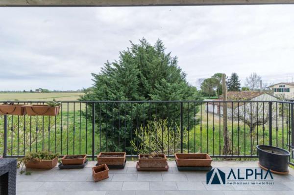 Appartamento in vendita a Forlì, Con giardino, 90 mq - Foto 22