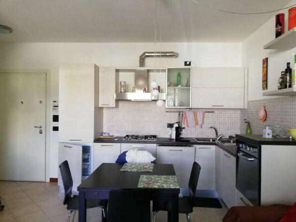 Appartamento in affitto a Forlimpopoli, Piscina, Arredato, 50 mq
