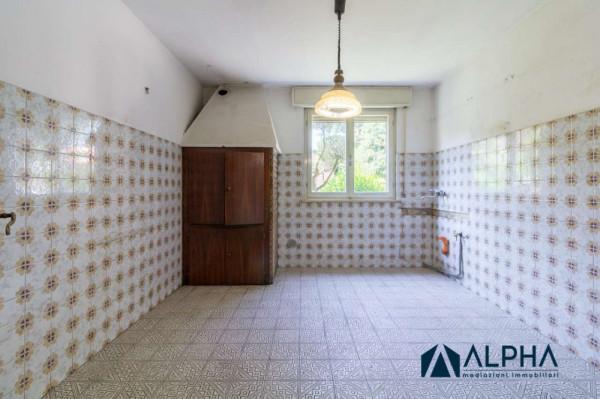 Casa indipendente in vendita a Forlimpopoli, Con giardino, 340 mq - Foto 9