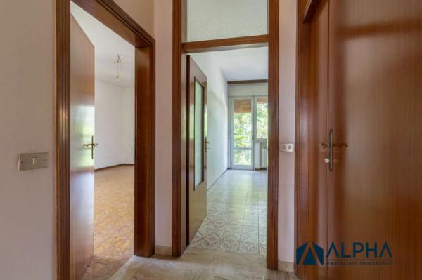 Casa indipendente in vendita a Forlimpopoli, Con giardino, 340 mq - Foto 31