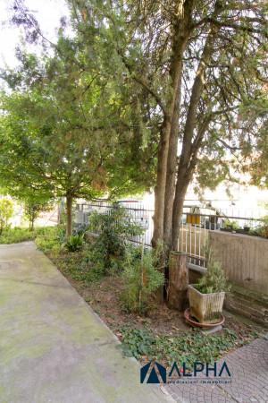 Appartamento in vendita a Forlimpopoli, Centro Storico, Con giardino, 41 mq - Foto 7