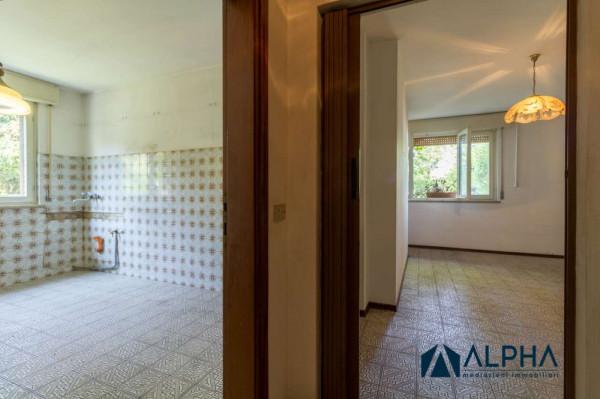 Appartamento in vendita a Forlimpopoli, Con giardino, 180 mq - Foto 4