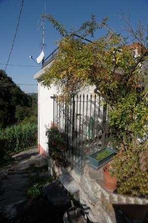 Casa indipendente in vendita a Sant'Olcese, Sant'olcese, Con giardino, 120 mq - Foto 37
