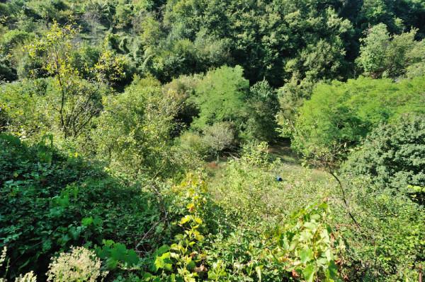 Casa indipendente in vendita a Sant'Olcese, Sant'olcese, Con giardino, 120 mq - Foto 5