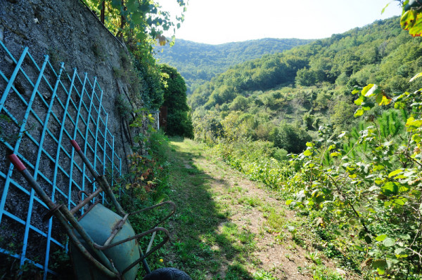 Casa indipendente in vendita a Sant'Olcese, Sant'olcese, Con giardino, 120 mq - Foto 3