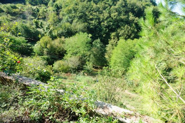 Casa indipendente in vendita a Sant'Olcese, Sant'olcese, Con giardino, 120 mq - Foto 6