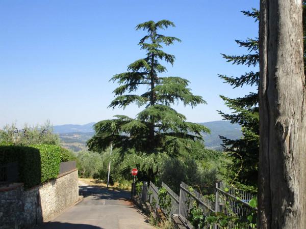 Villa in vendita a Bagno a Ripoli, Con giardino, 285 mq - Foto 20