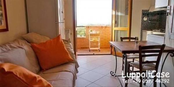 Appartamento in vendita a Monteriggioni, 50 mq - Foto 6