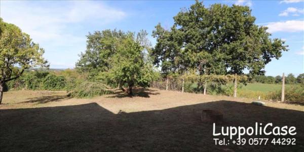 Villa in vendita a Monteriggioni, Con giardino, 435 mq - Foto 14