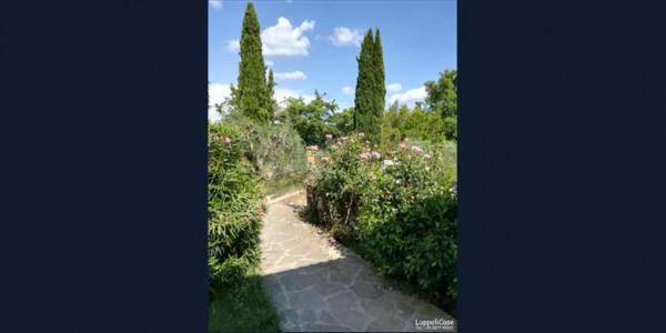 Villa in vendita a Castelnuovo Berardenga, Con giardino, 380 mq - Foto 9