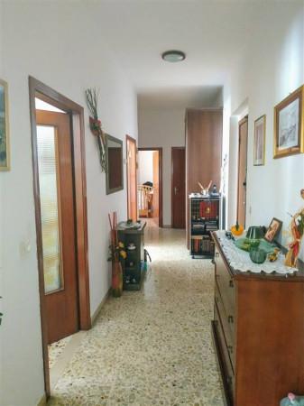 Appartamento in vendita a Città di Castello, Coop, 90 mq - Foto 2