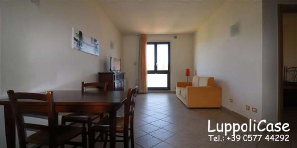 Appartamento in vendita a Siena, Con giardino, 62 mq - Foto 12