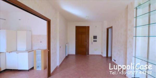 Appartamento in vendita a Murlo, Arredato, con giardino, 90 mq - Foto 9