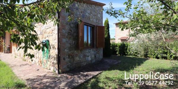 Appartamento in vendita a Murlo, Arredato, con giardino, 90 mq - Foto 7