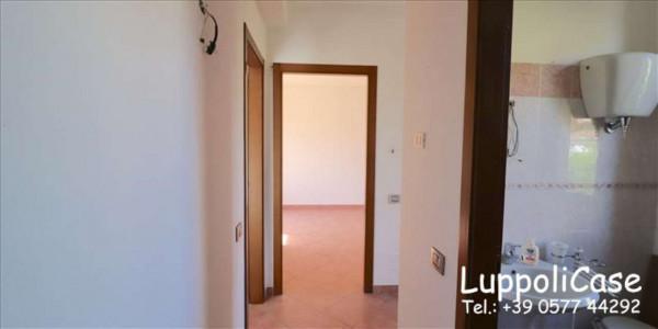 Appartamento in vendita a Murlo, Arredato, con giardino, 90 mq - Foto 12