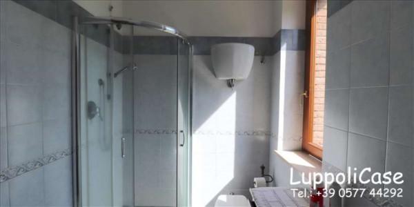 Appartamento in vendita a Murlo, Arredato, con giardino, 90 mq - Foto 17