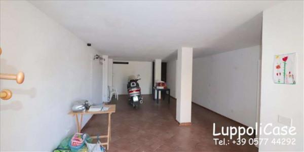 Appartamento in vendita a Murlo, Arredato, con giardino, 90 mq - Foto 4