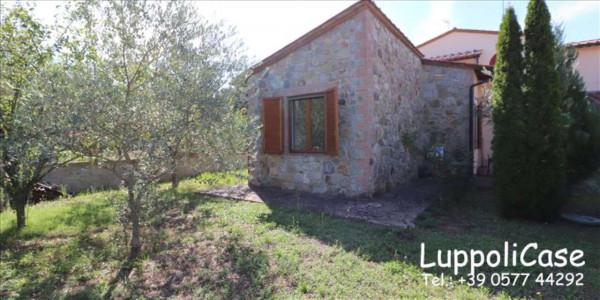 Appartamento in vendita a Murlo, Arredato, con giardino, 90 mq - Foto 8