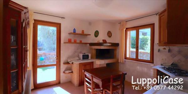 Appartamento in affitto a Murlo, Arredato, con giardino, 140 mq - Foto 20