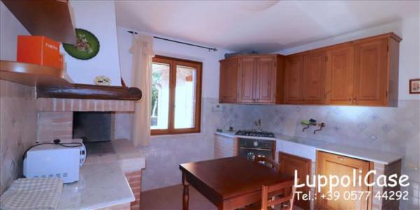 Appartamento in affitto a Murlo, Arredato, con giardino, 140 mq - Foto 19